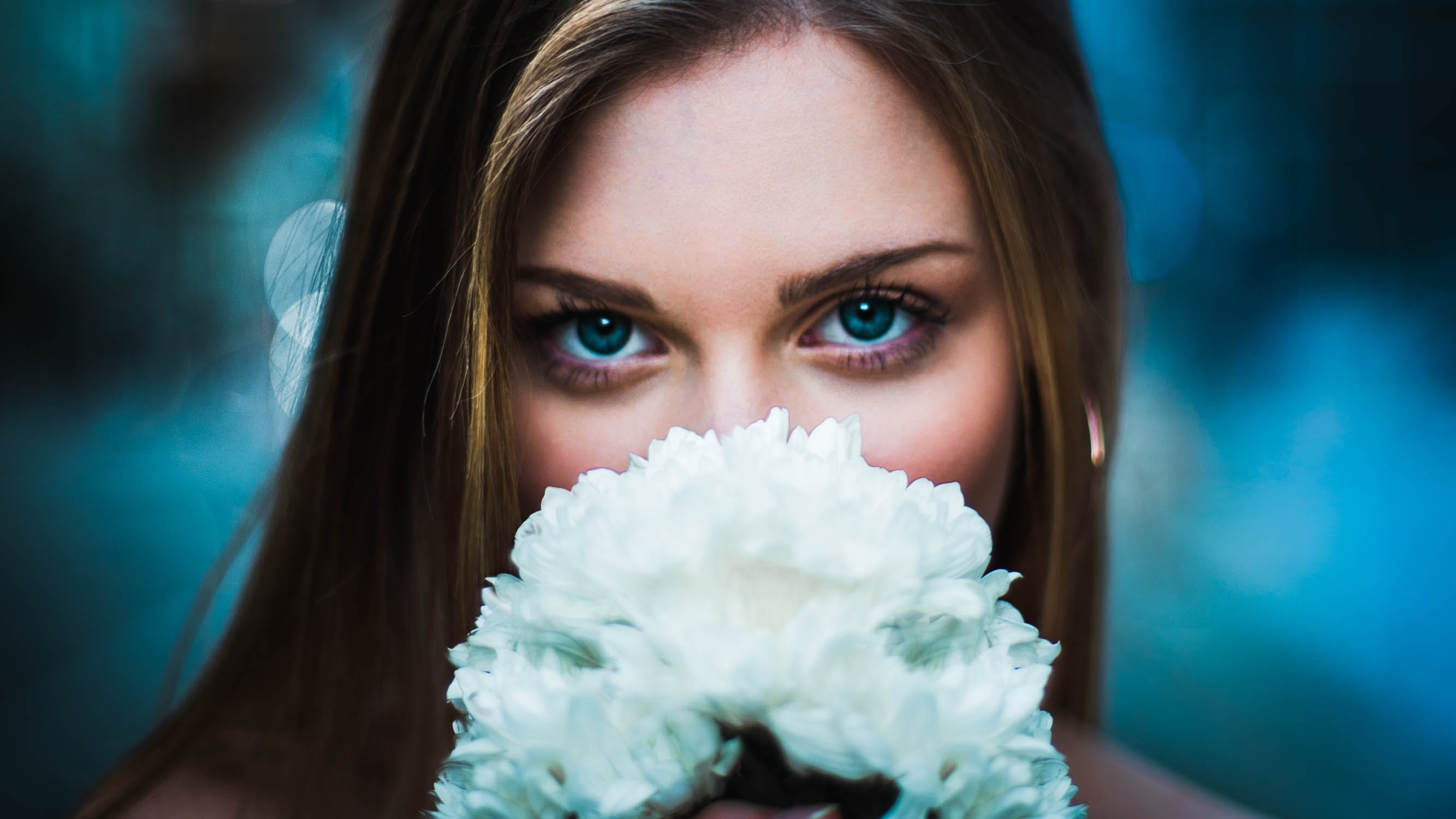 Free stock photo of flower, diy, comedy, official