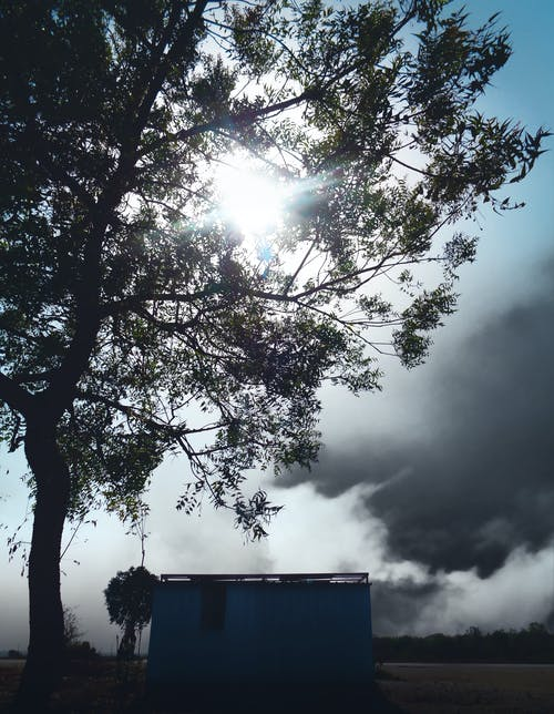 Kostenloses Stock Foto zu abend, abendhimmel, abendsonne, bäume