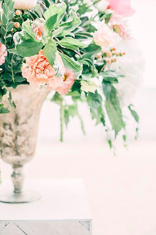 blomst, bryllup, bukett