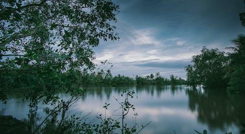 Photography of Lake