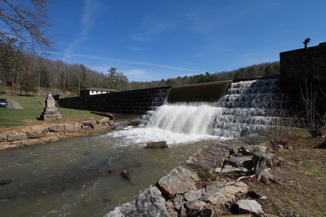 barragem, castor pequeno, represa