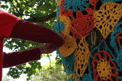 Ingyenes stockfotó fa, fonál, műalkotás témában