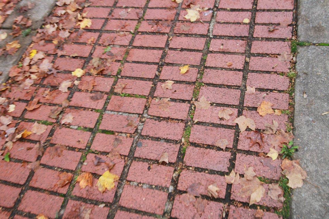 brick road, bricks, masonry