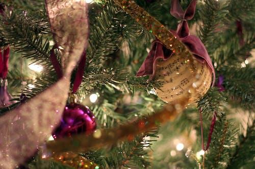Ingyenes stockfotó Karácsony, nyaralás, zene témában