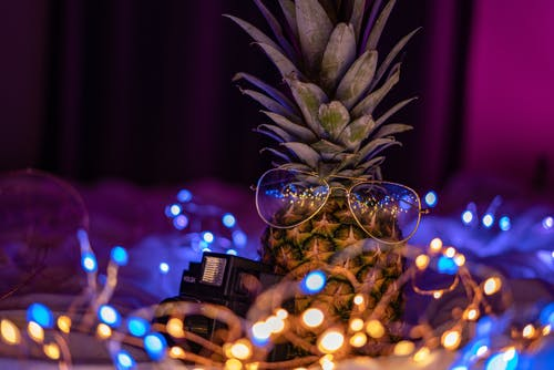 Free stock photo of camera, fairy lights, gold glasses, holga