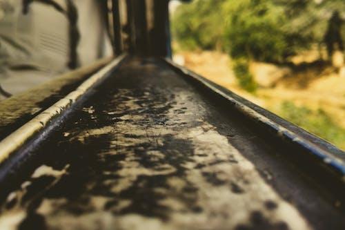 ağaç, antrenman yaptırmak, bulanık, bulanık arka plan içeren Ücretsiz stok fotoğraf