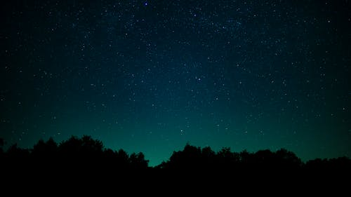 Free stock photo of forest, nature, night, sky