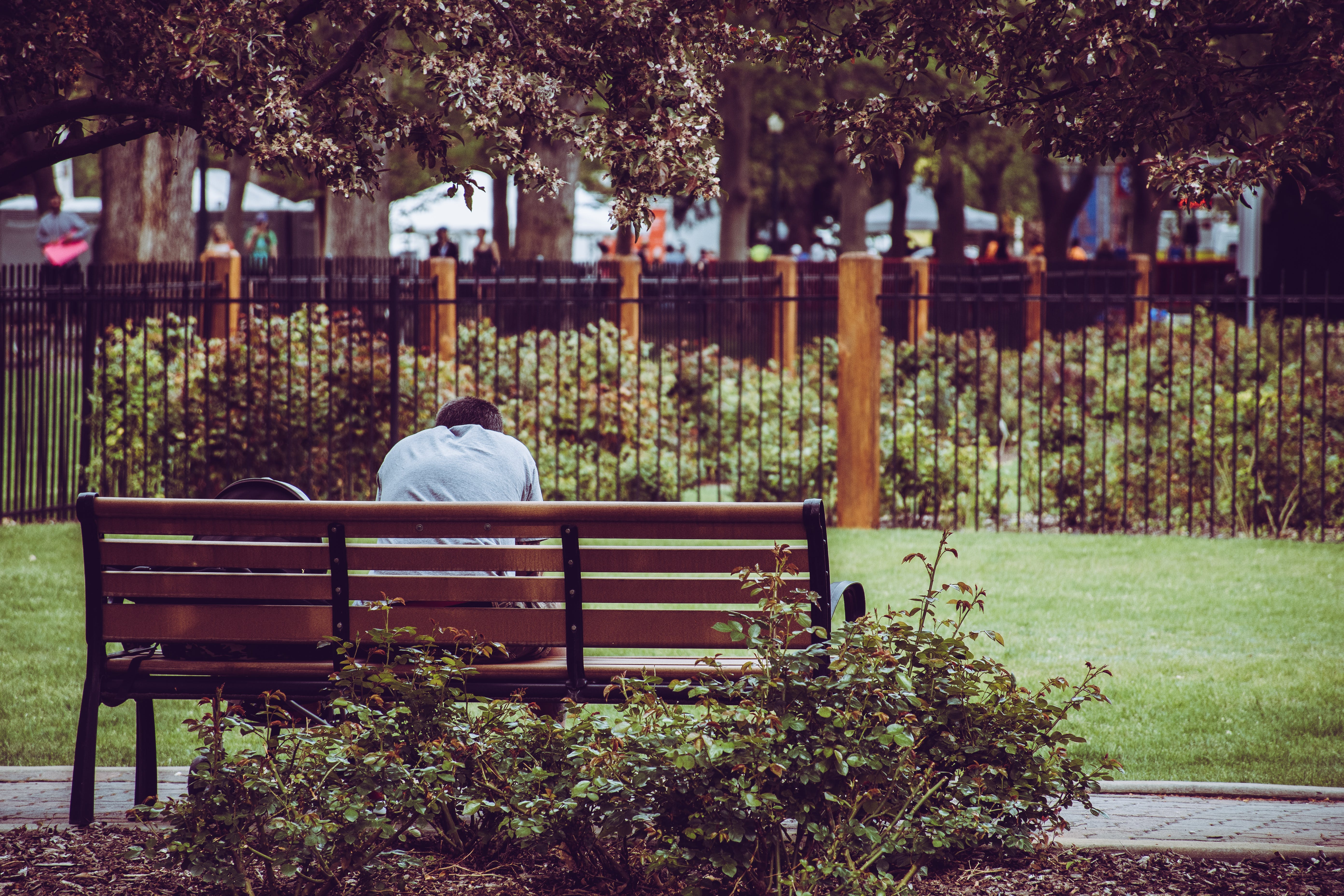 Photo Of Person Sitting On Brown Bench