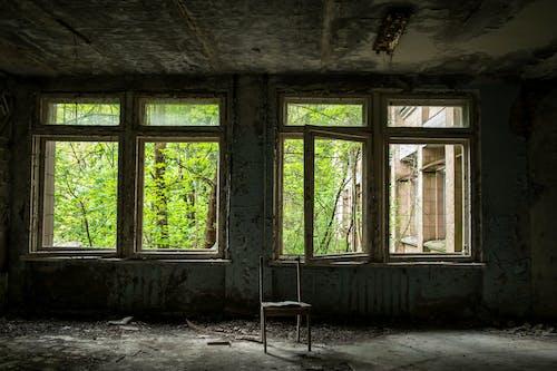 Immagine gratuita di abbandonato, edificio abbandonato, natura