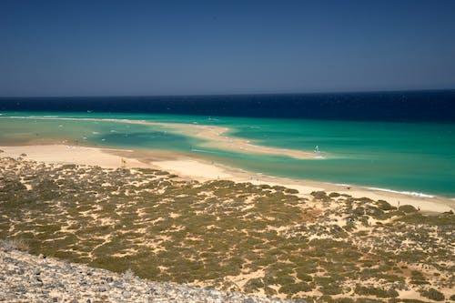 바다, 푸에르 테 벤츄라, 해변의 무료 스톡 사진
