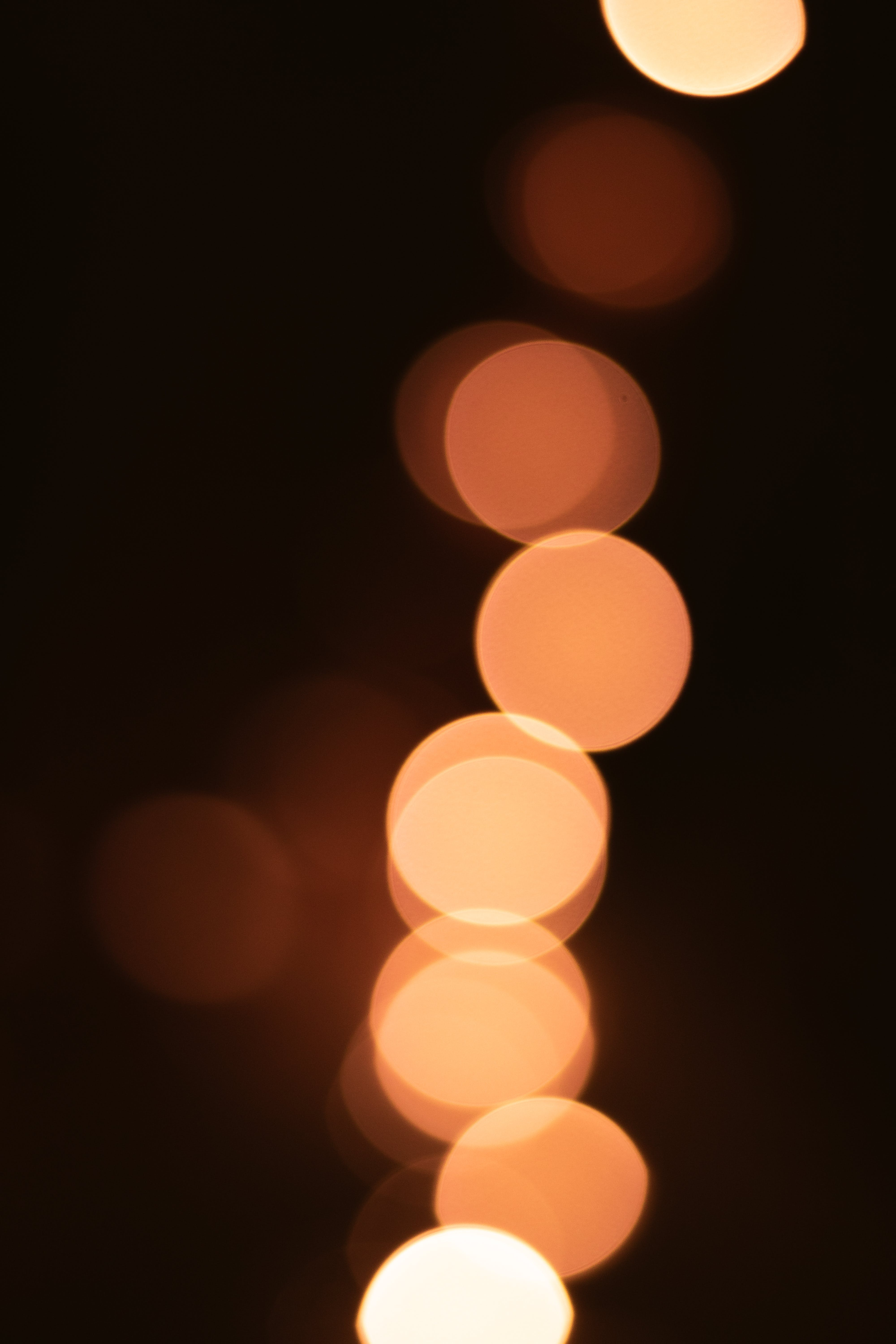 Free stock photo of blurry background, bokeh, darkness, fairy lights