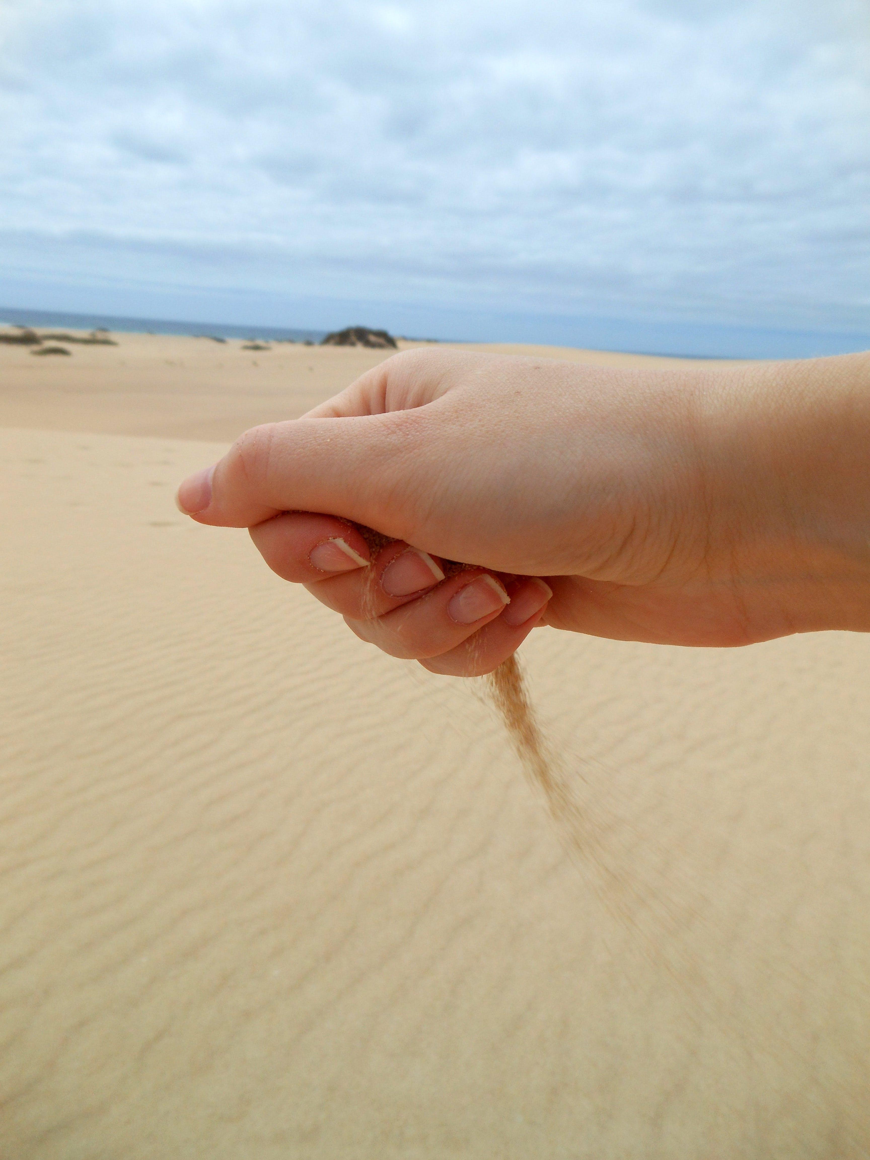 Free stock photo of beach, sand, hand, hand with sand