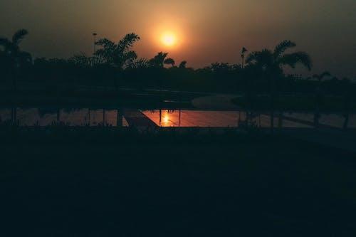 ağaç, akşam, Akşam gökyüzü, akşam Güneşi içeren Ücretsiz stok fotoğraf