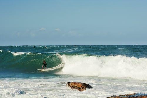 서퍼, 서핑하다의 무료 스톡 사진