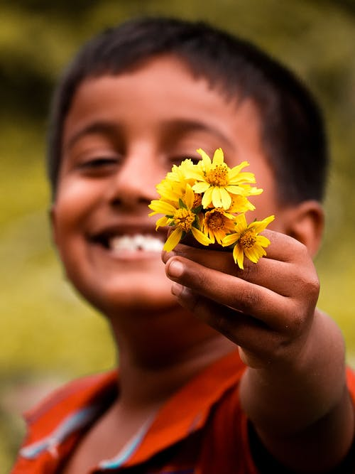 Free stock photo of alpha, beautiful flowers, happiness, kid
