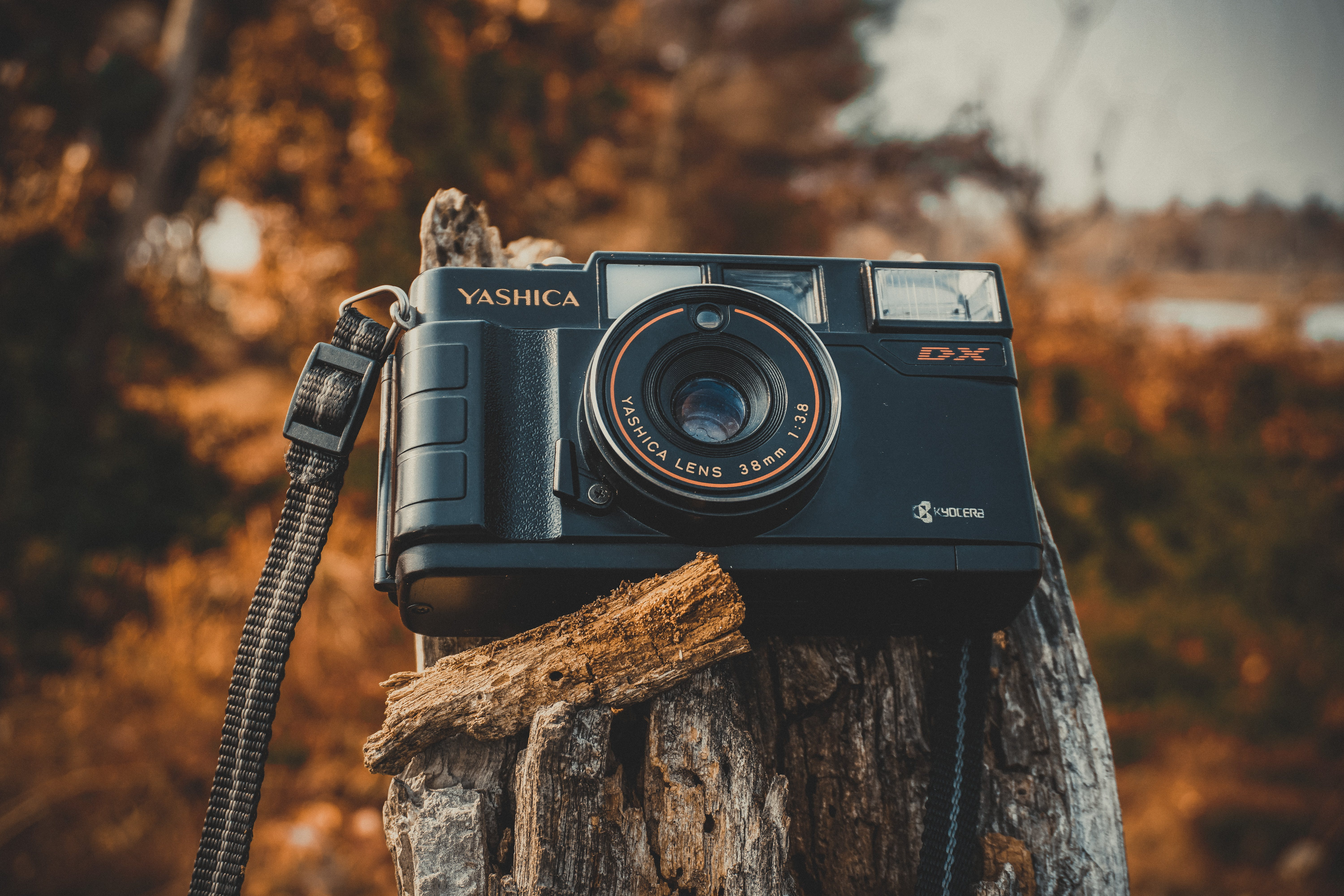 Shallow Focus Photography of Black Yashica Film Camera during Dawn