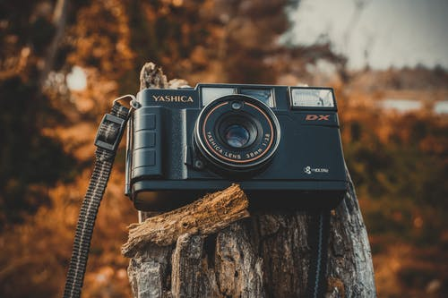 Бесплатное стоковое фото с дерево, камера, линза, оборудование