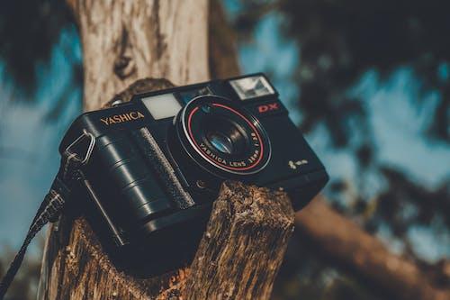 Základová fotografie zdarma na téma akce, clona, digitální fotoaparát, elektronika