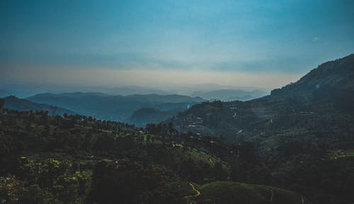 Základová fotografie zdarma na téma denní světlo, dřevo, hora, kopec