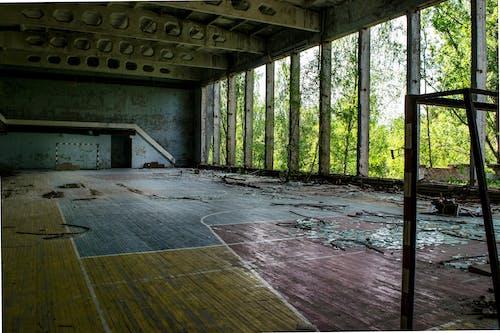 Immagine gratuita di edificio abbandonato, interni, natura