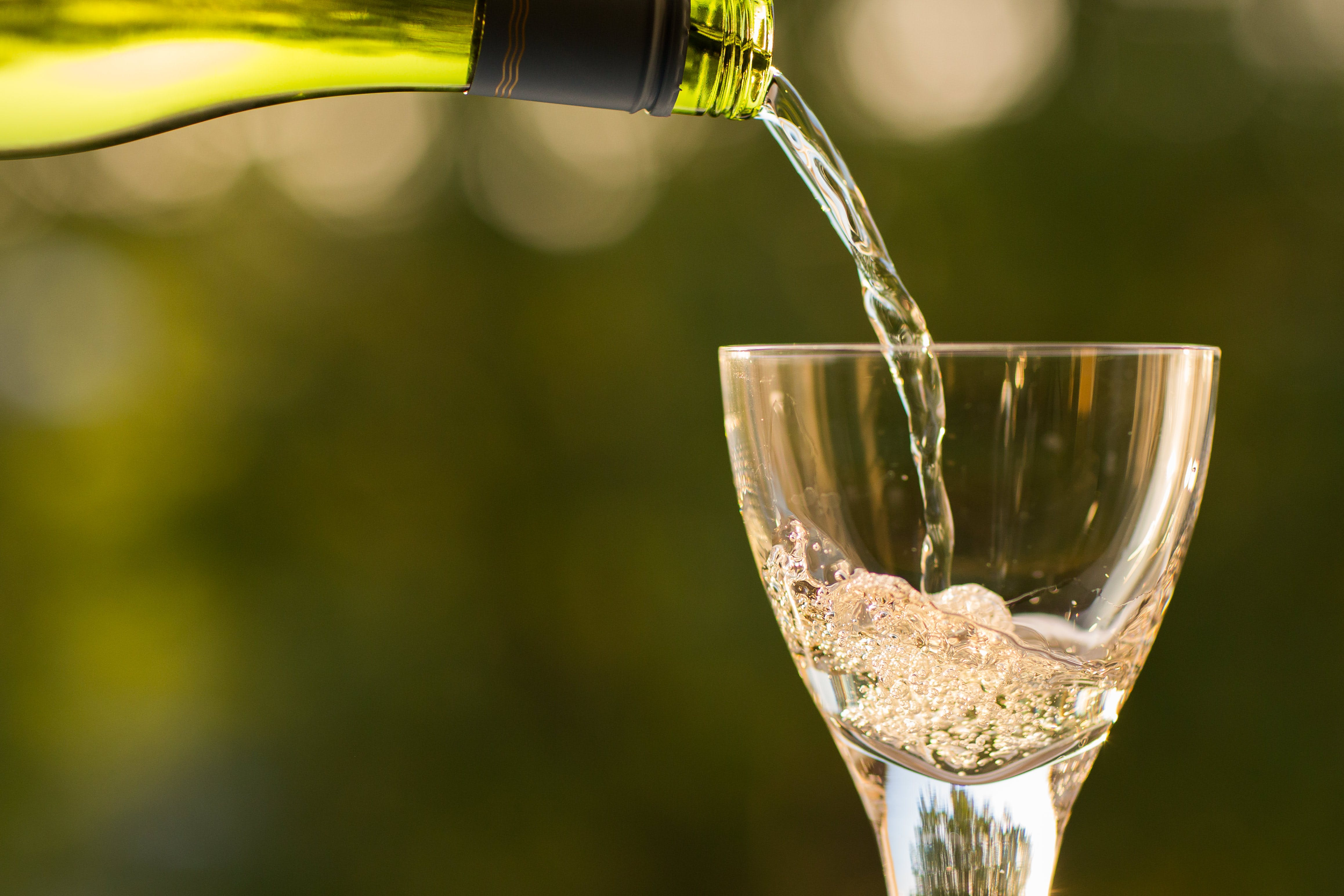 Free stock photo of drink, wine, champagne, macro