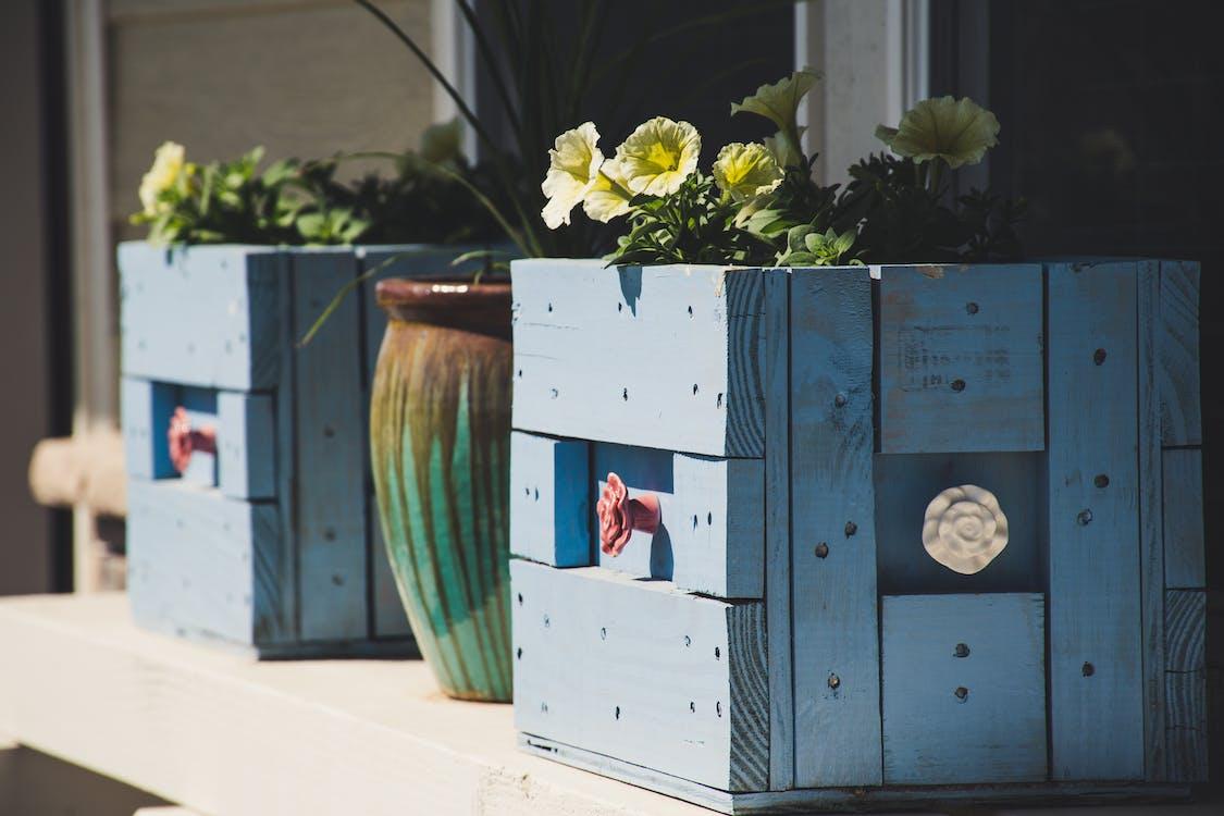 Two Blue Wooden Pots