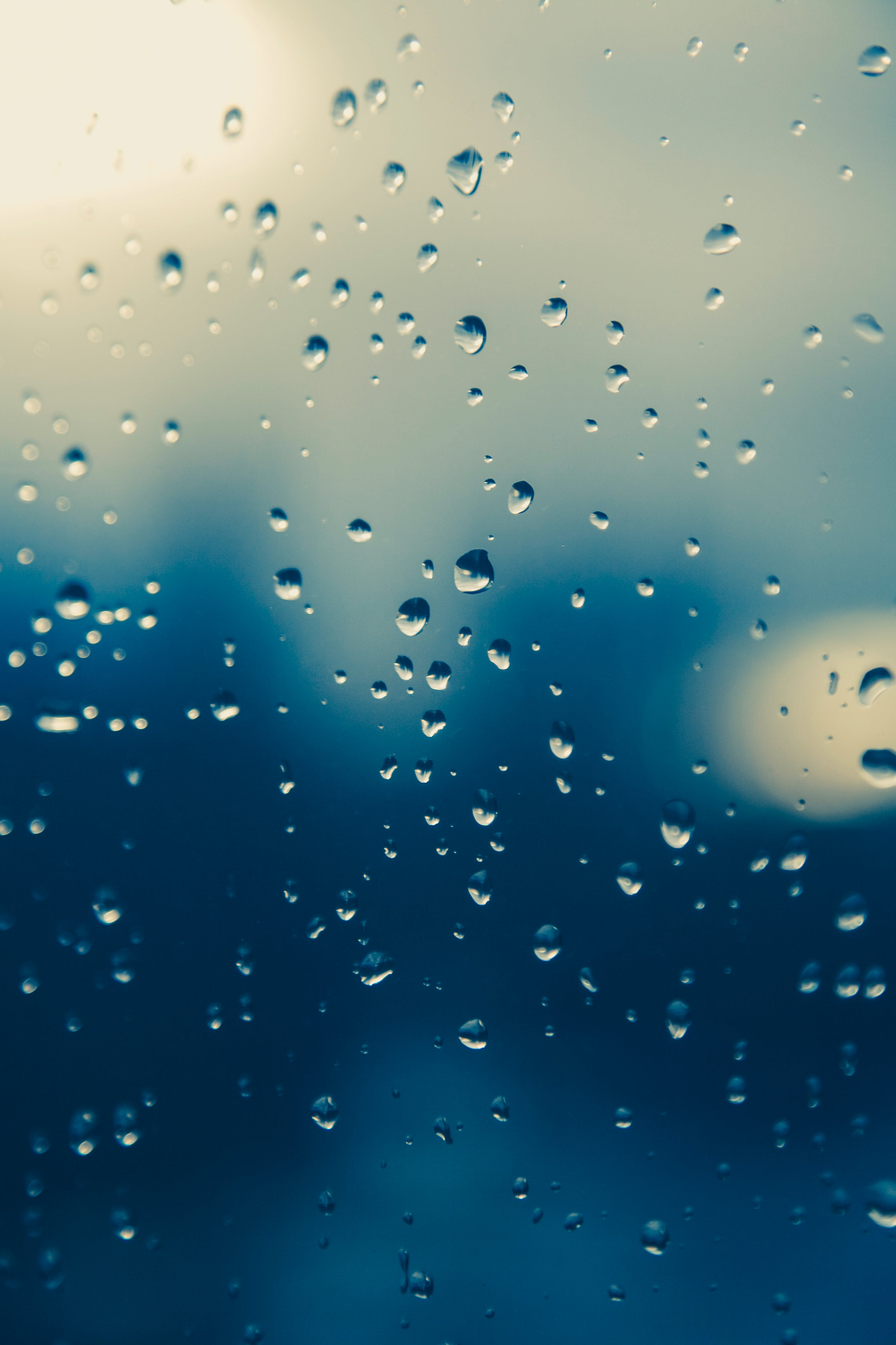 Kostenloses Stock Foto zu nass, regen, regentropfen