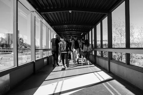 ガラス窓, シティ, ブリッジ, 人の無料の写真素材