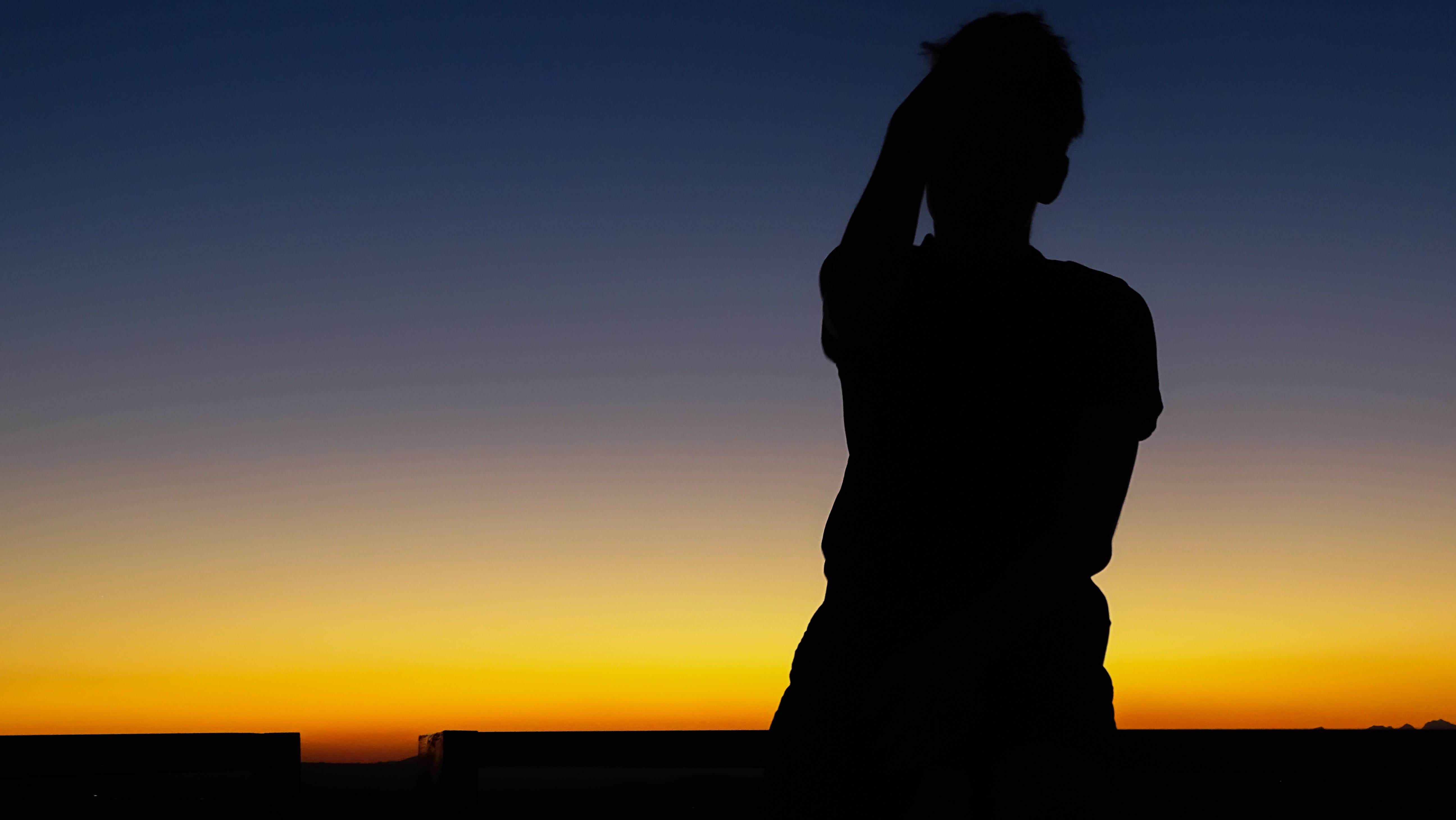 Silhouette Photo of Person