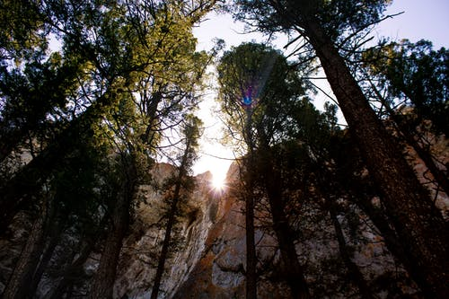 Free stock photo of helena montana, Montana, mount helena