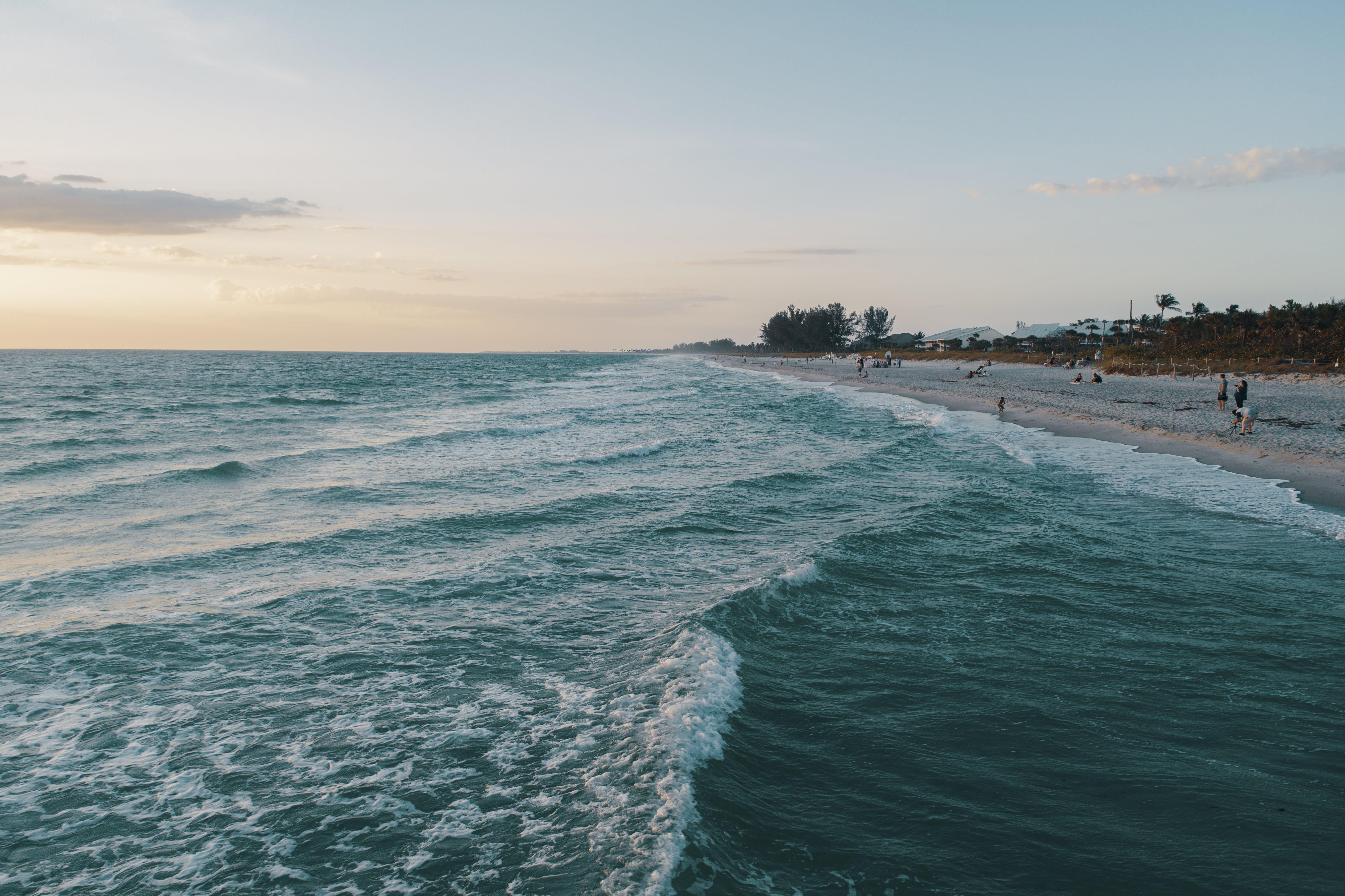 dalga, dalgalar, deniz