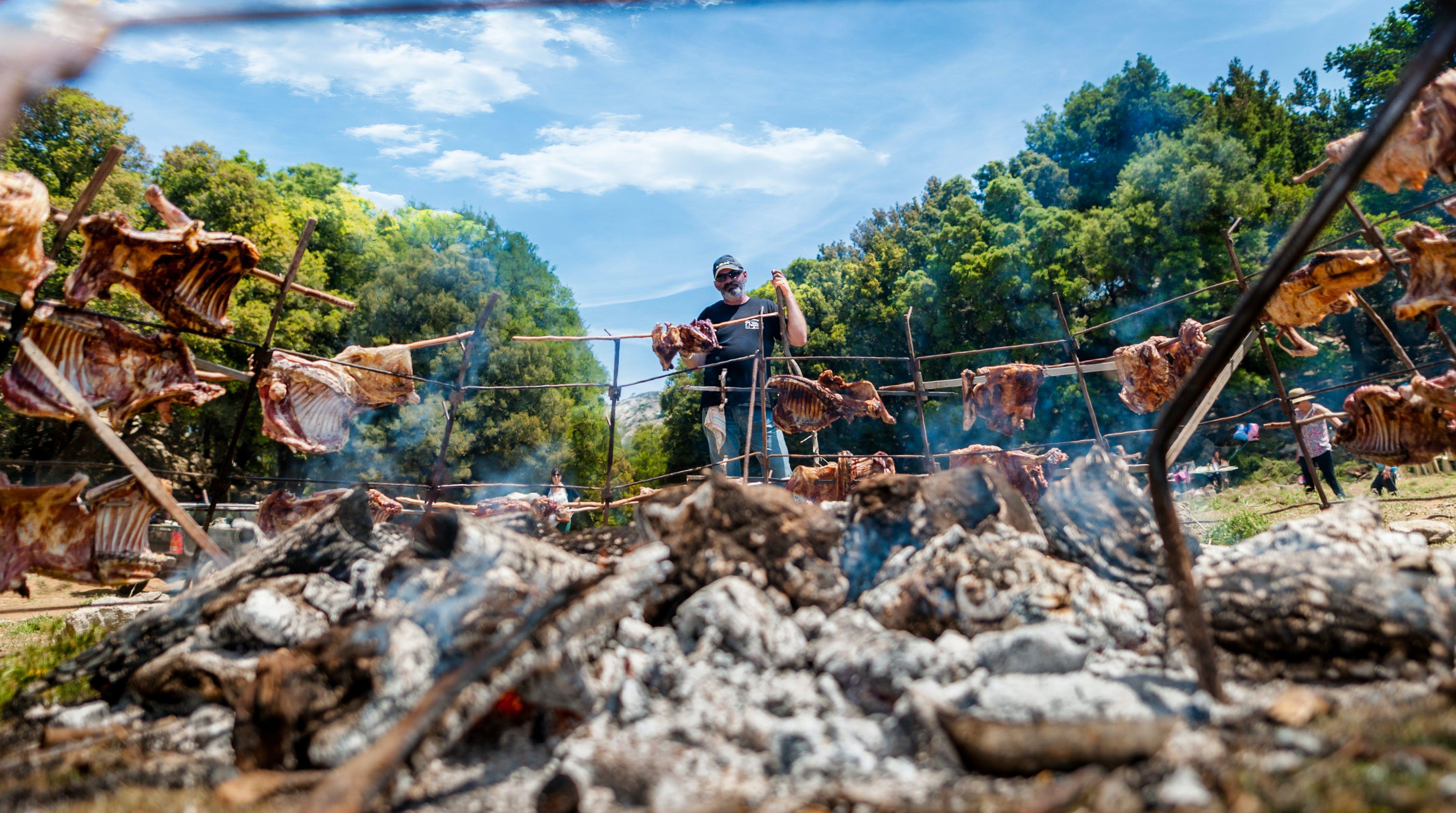 Free stock photo of barbecue, coal, farmer, green field