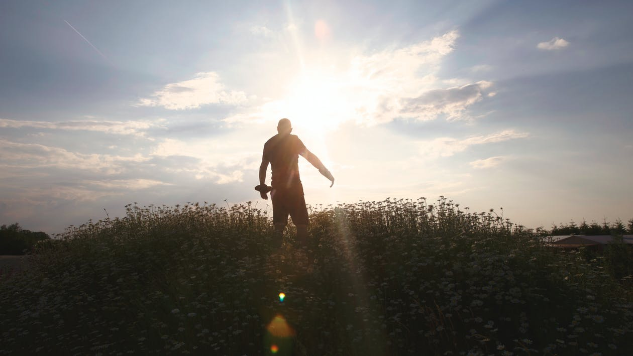 Silhouette of Man during Daytime