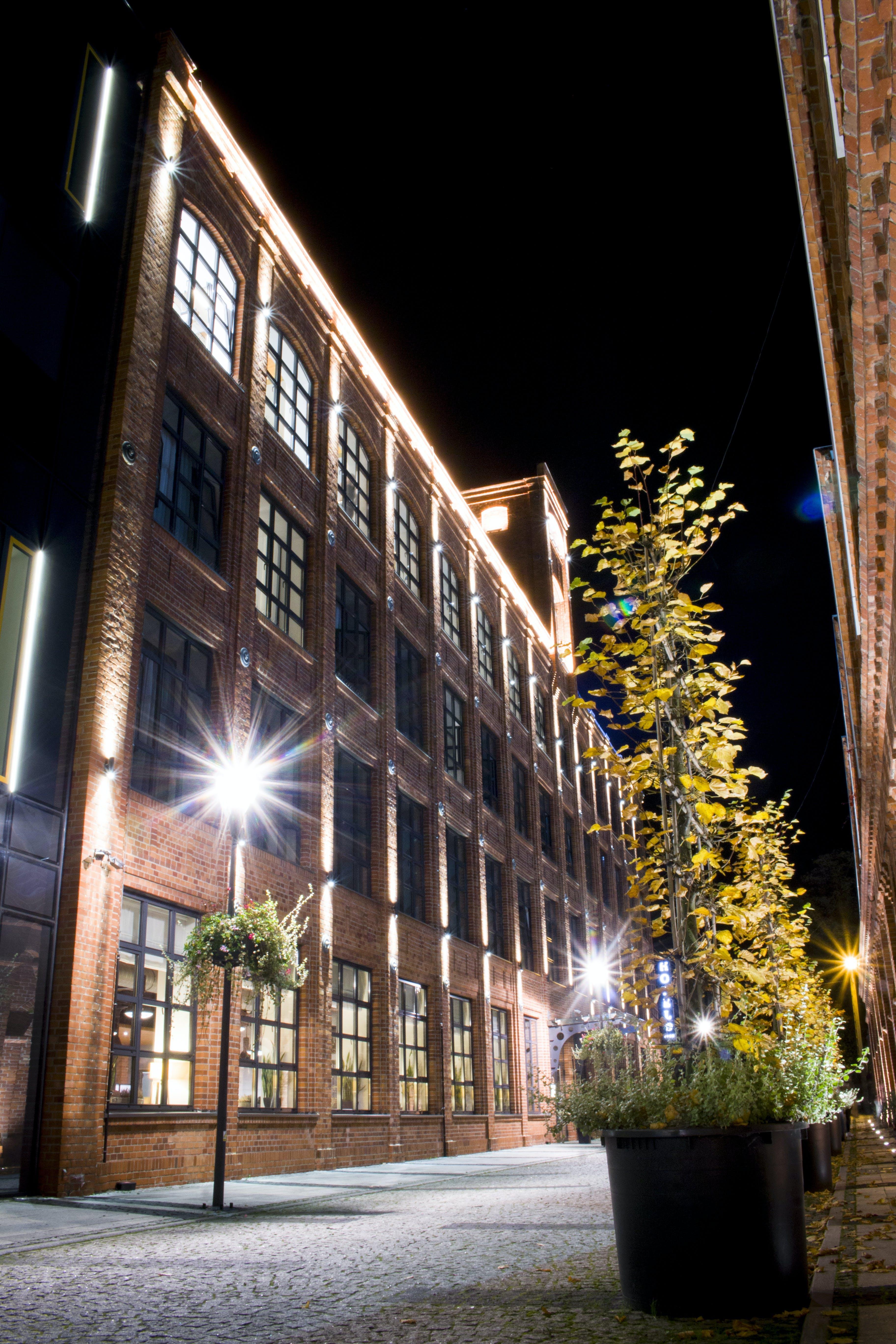 Free stock photo of city, flowers, hotel, bricks