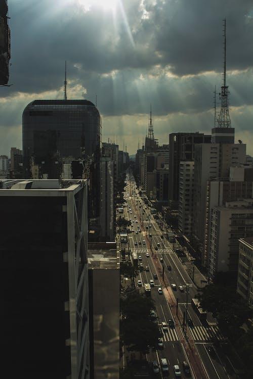 autá, avenida, Brazília