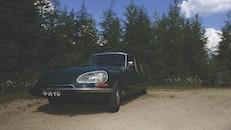 trees, car, vehicle