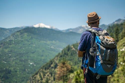 Foto d'estoc gratuïta de adult, alt, aventura, caminada