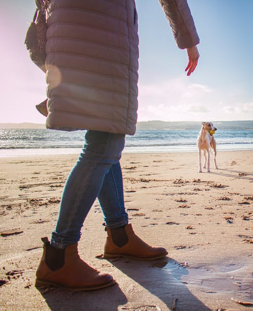 Person in Bubble Coat Walking on Beach Near Dog at Daytime