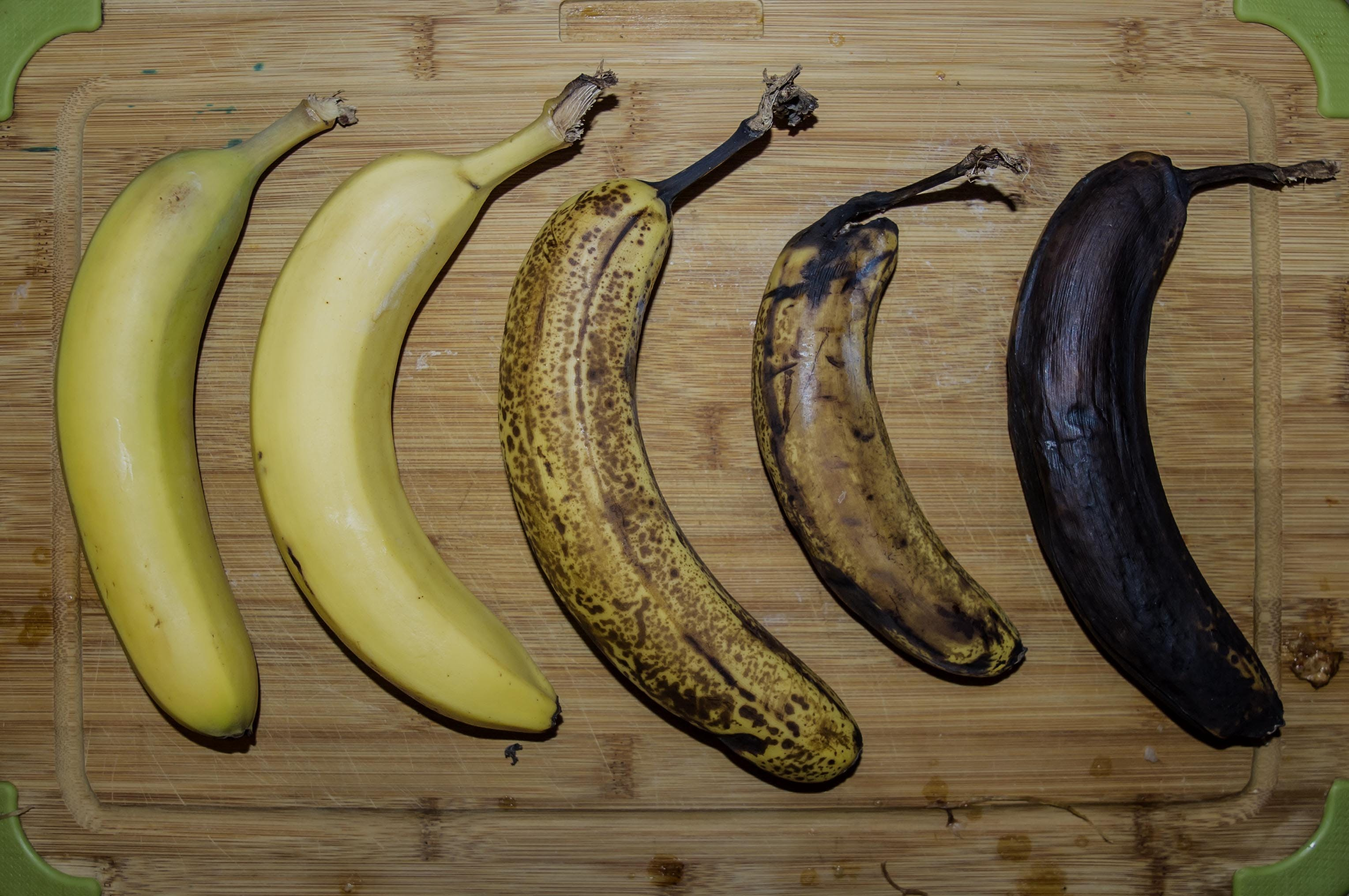 Free stock photo of banana, fresh, fruit, rootting