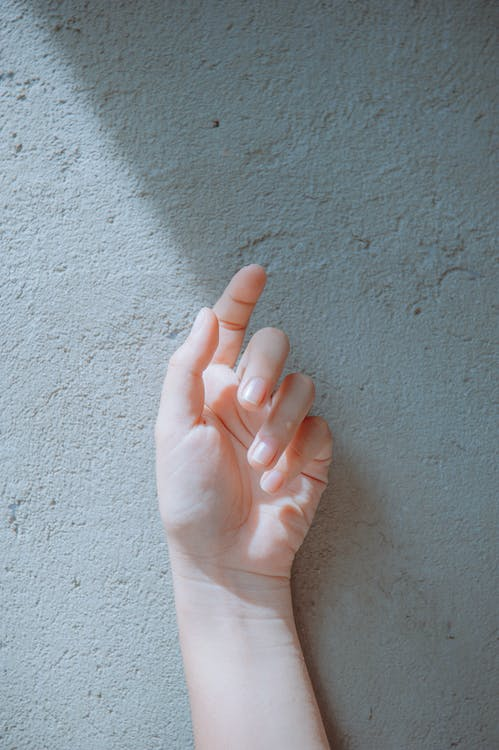 Close-Up Photography of Hand