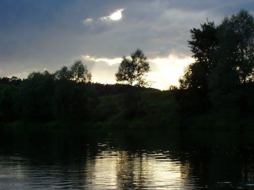 Ingyenes stockfotó este, fák, naplemente, sötét témában