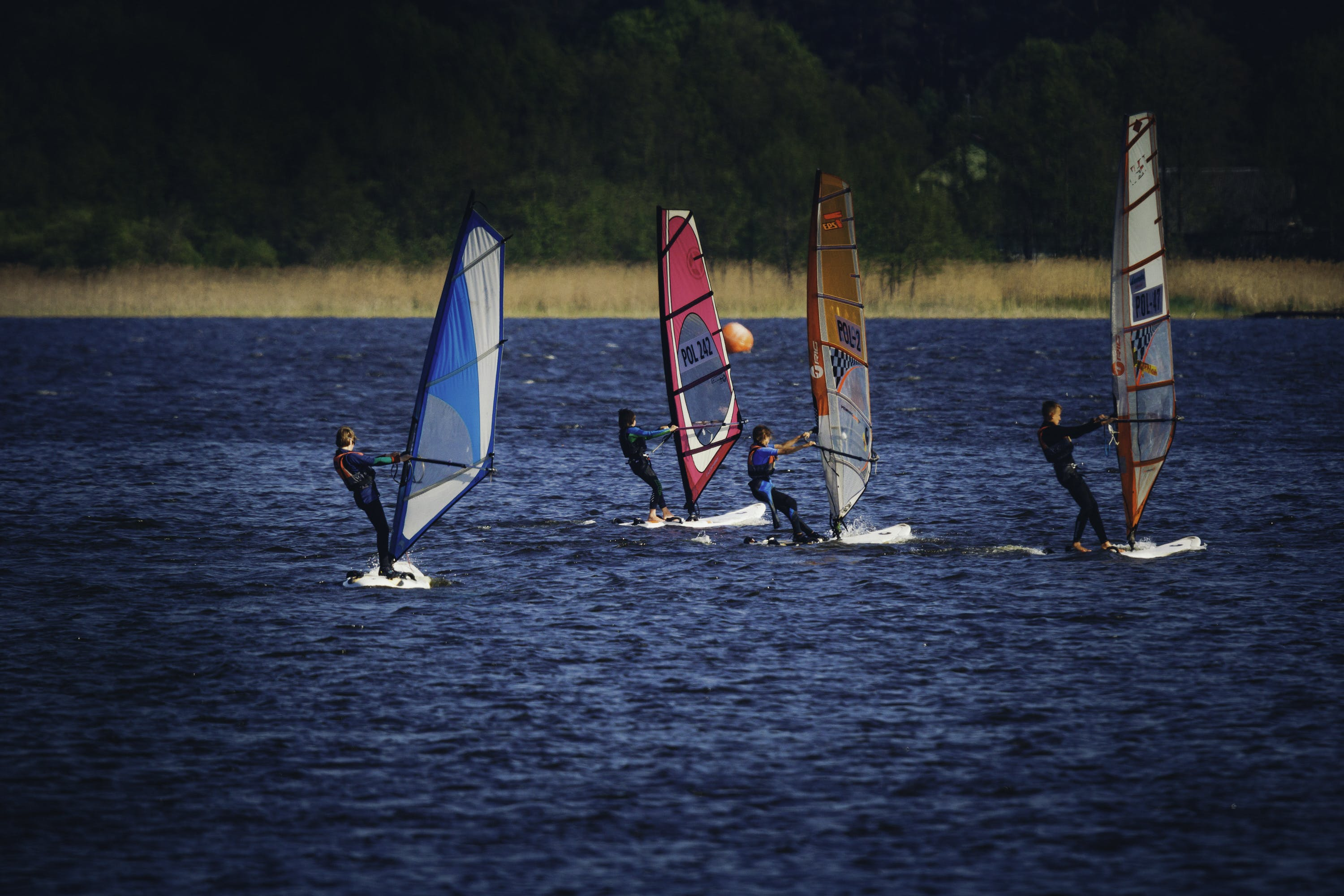 Four Person Riding Wind Sailboard on Body of Water