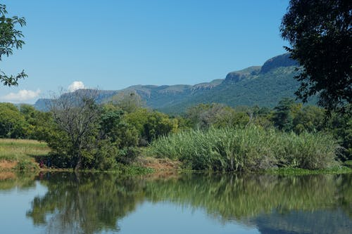 Free stock photo of blue mountains, blue water, dam, hyacinth