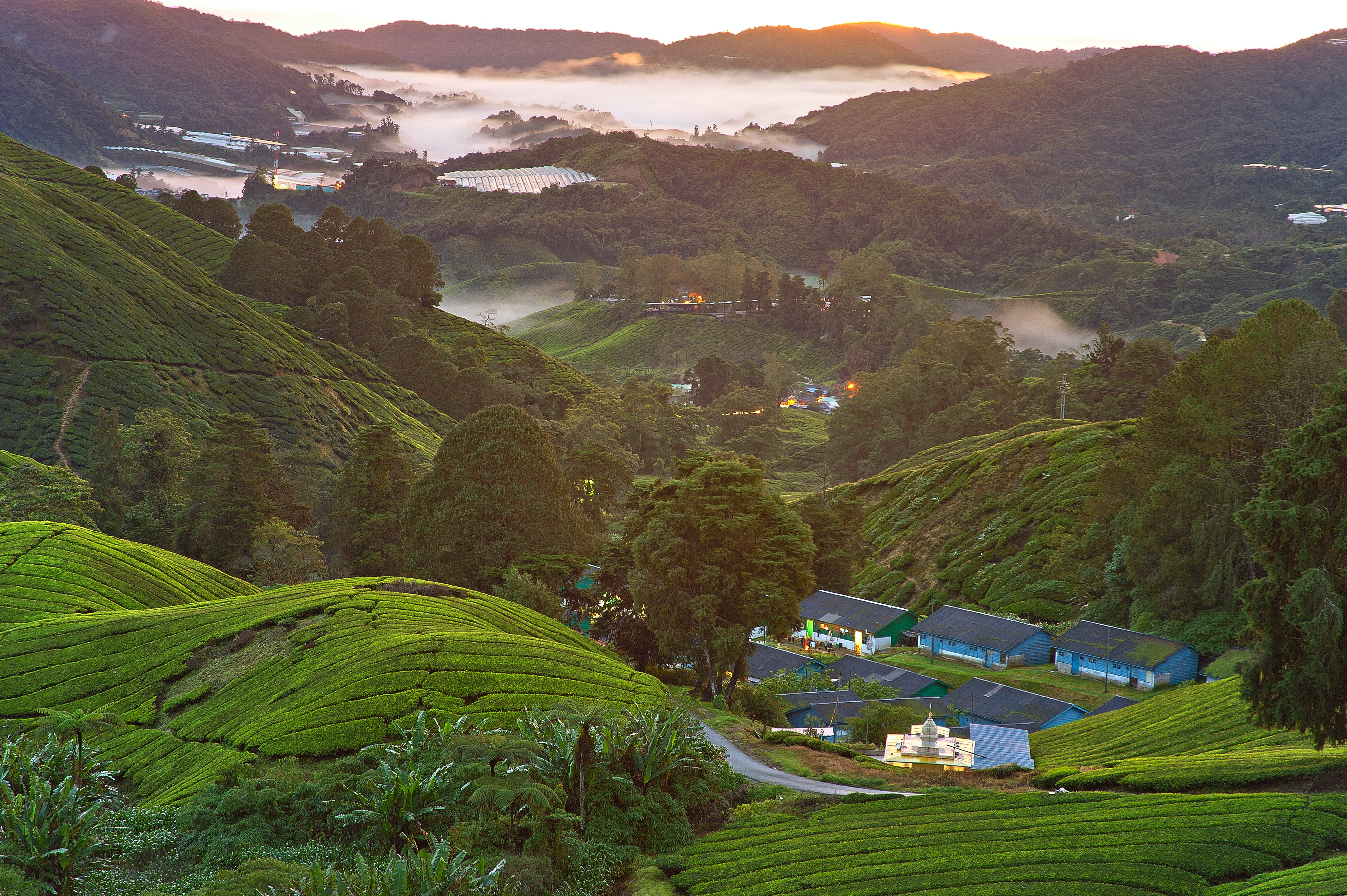 High Angle Photography of Village on Green Mountains