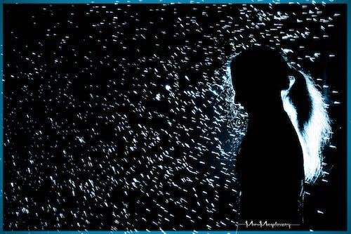 검정과 파랑, 사랑, 어린 소녀, 역광의 무료 스톡 사진