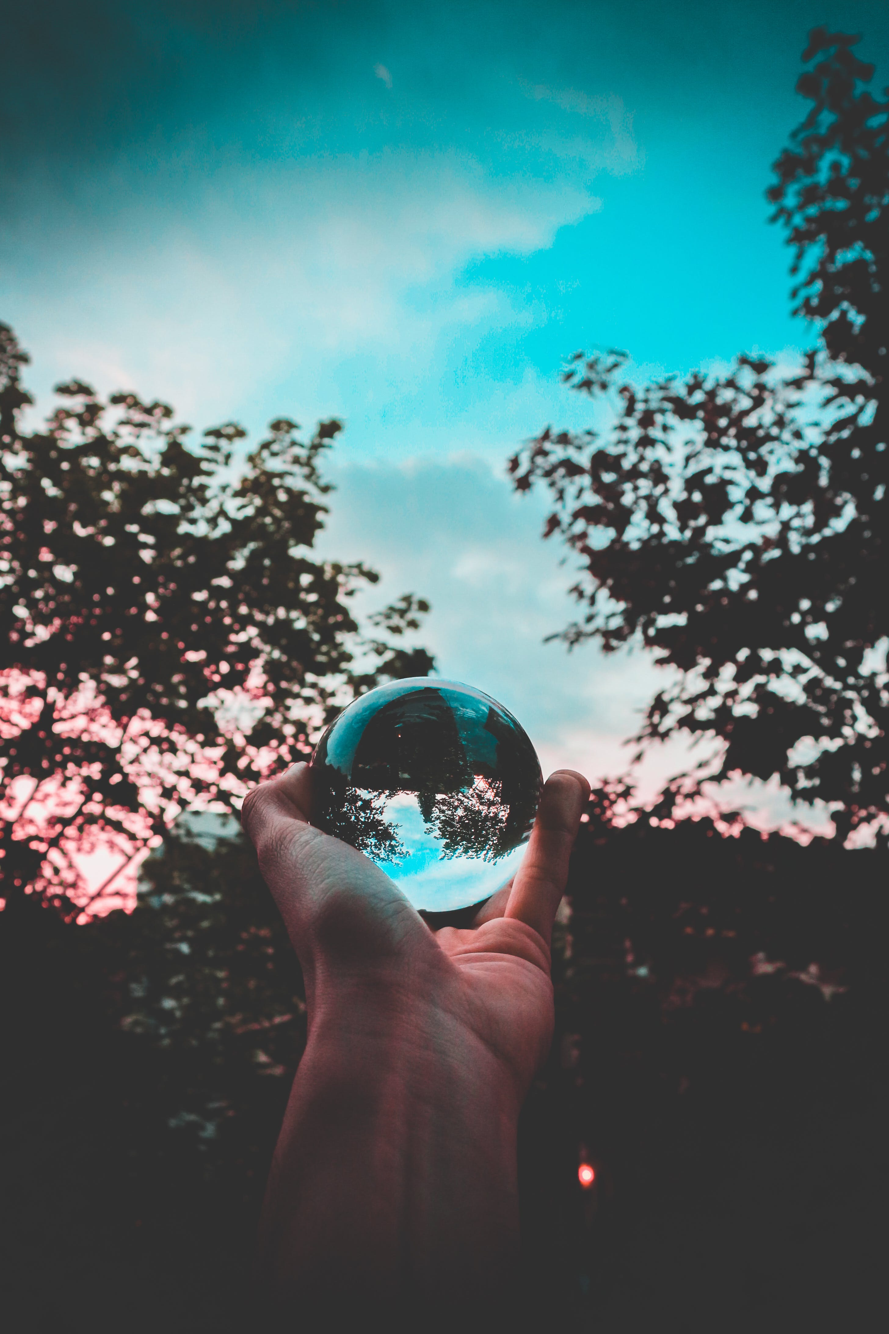 Free stock photo of light, nature, sky, people