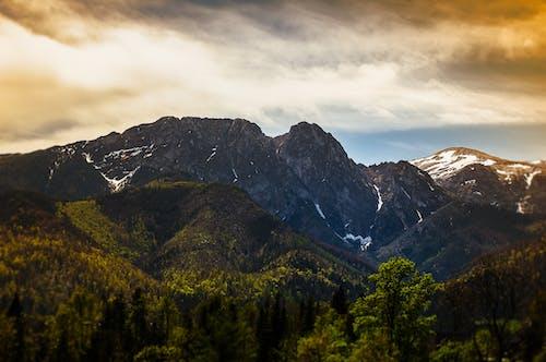 구름, 그림자, 녹색, 산 정상의 무료 스톡 사진