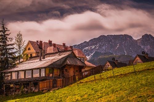 녹색, 등산가, 목조 오두막, 산의 무료 스톡 사진