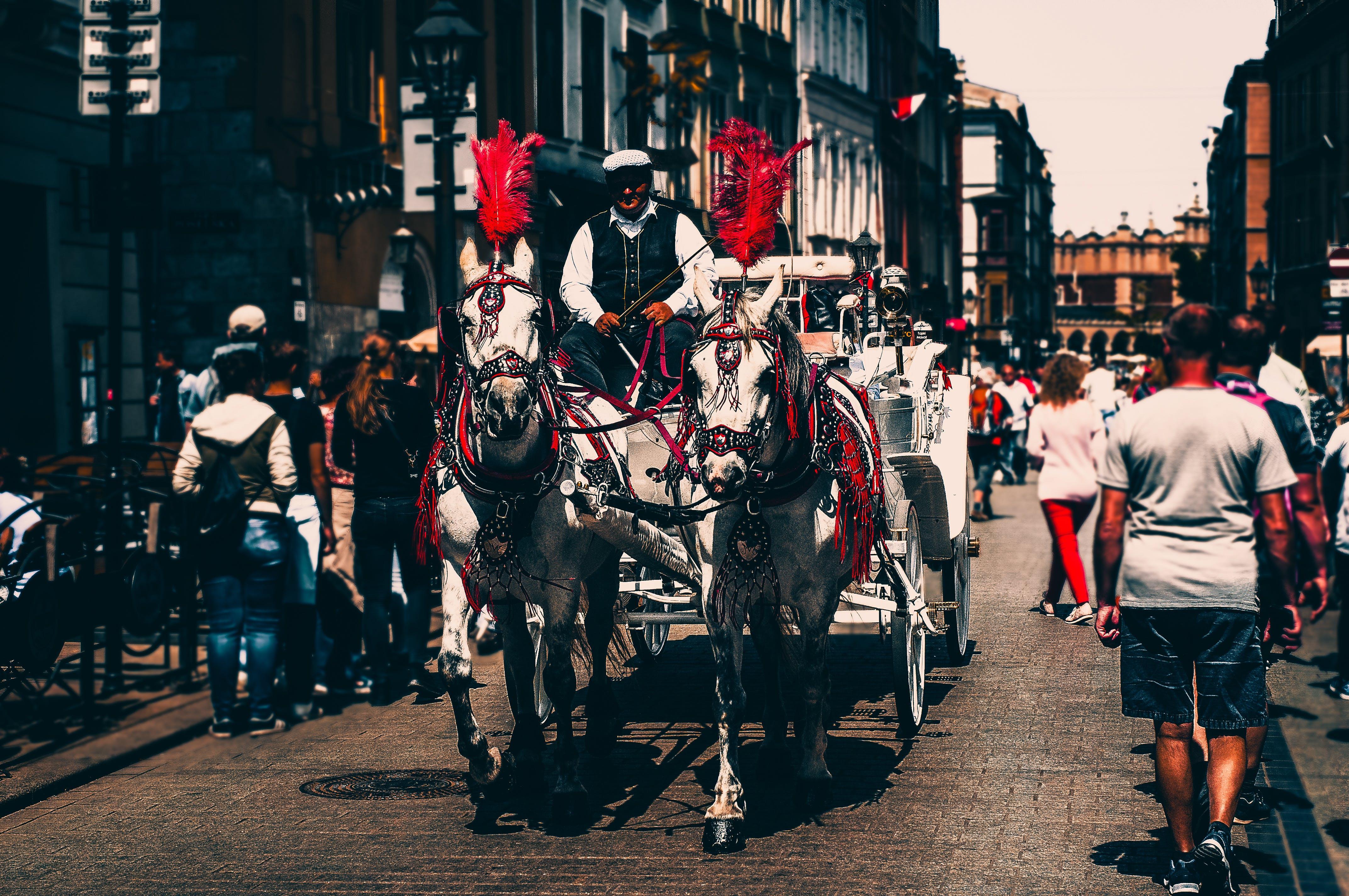 a man riding a Carriage