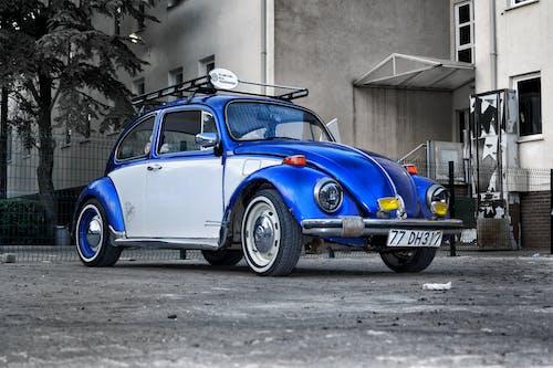 Gratis arkivbilde med bil
